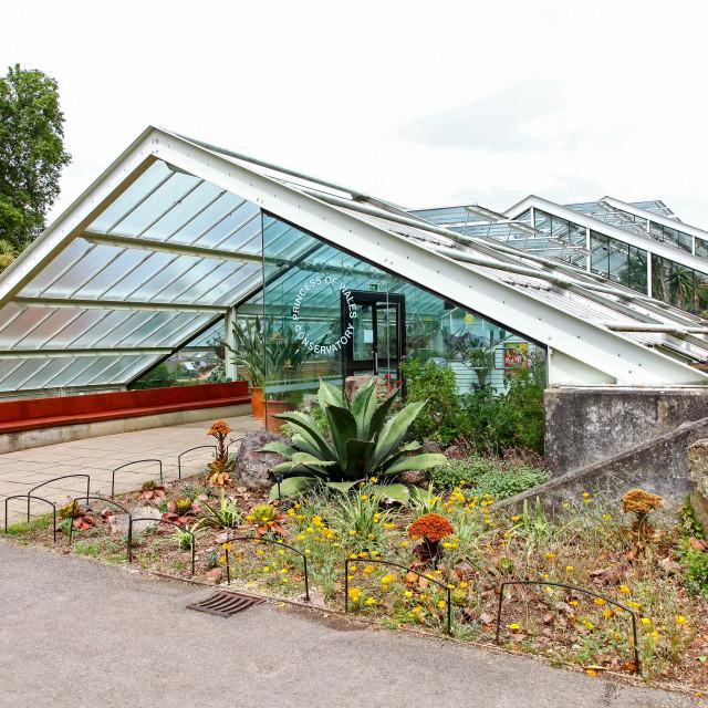 """The Princess of Wales Conservatory at Kew Royal Botanical Garden"" stock image"