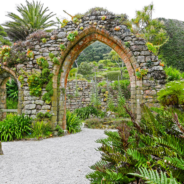 """Tresco Abbey Gardens, Tresco, Isles of Scilly, England, United K"" stock image"