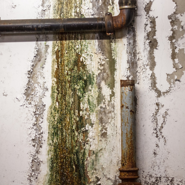 """Rusty Pipes and Mould"" stock image"