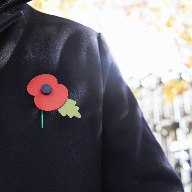 """Birmingham, UK - 6 November 2016: Close Up Of Man Wearing Remembrance Day Poppy"" stock image"