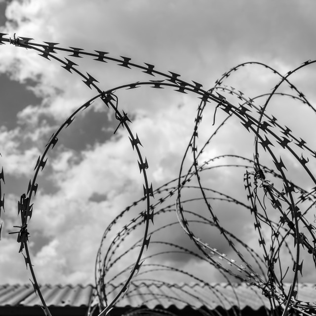 """""""Detail Of Barbed Wire In Black And White; Soweto, Gautang, South Africa"""" stock image"""