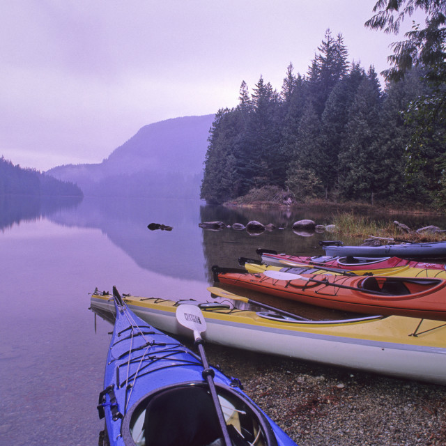 """""""Kayaks Rest By The Shore Of Loon Lake, Early Fall Morning, Loon Lake, Near..."""" stock image"""