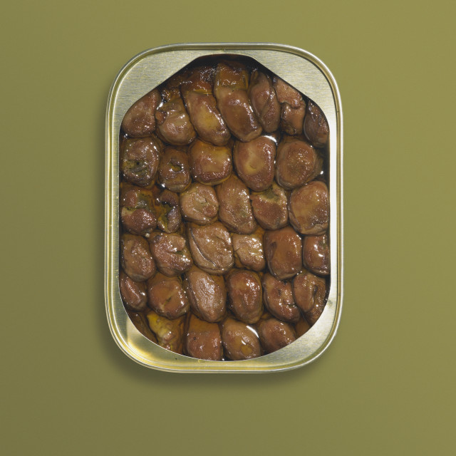 """""""Canned oysters"""" stock image"""