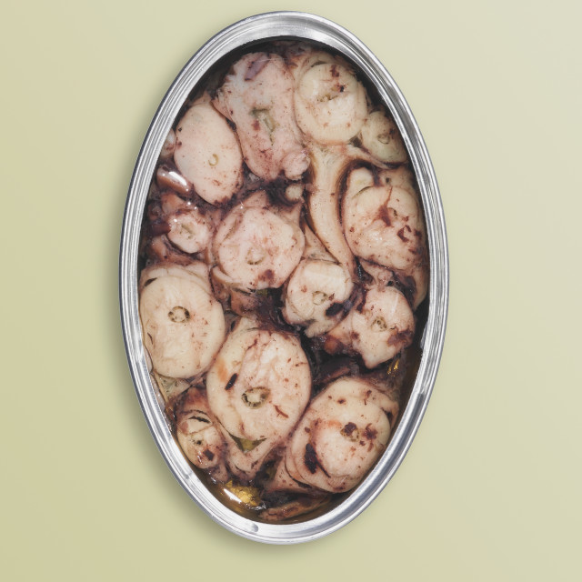 """""""Canned octopus"""" stock image"""