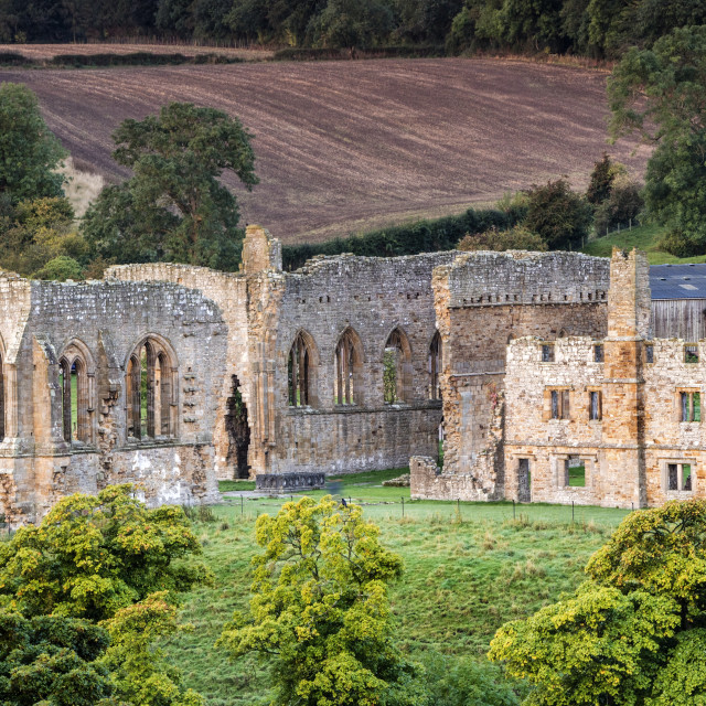 """The Ruins of Egglestone Abbey near Barnard Castle, County Durham"" stock image"