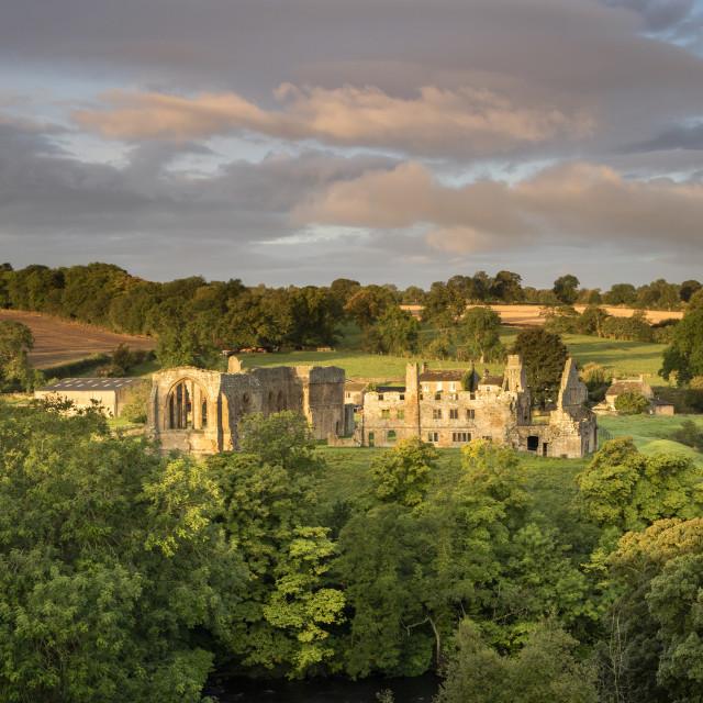 """Early Morning Light Illuminating the Ruins of Egglestone Abbey n"" stock image"