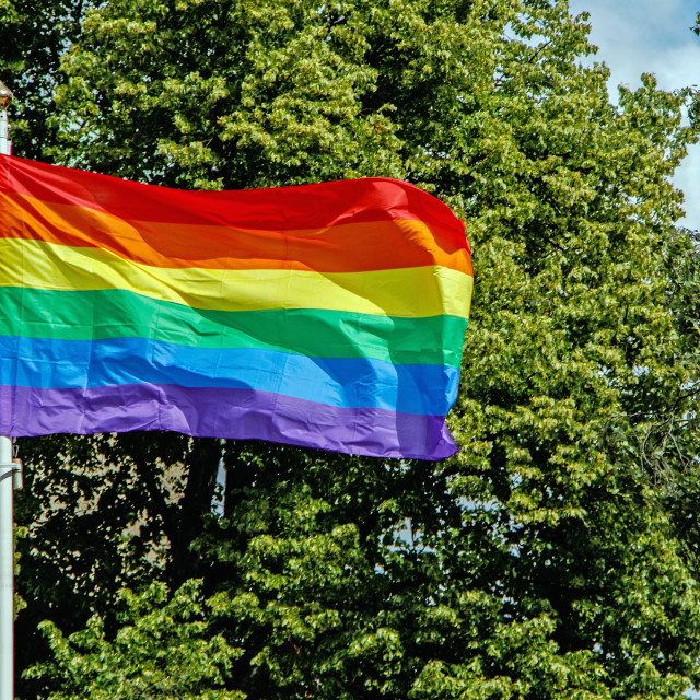 """The pride flag"" stock image"