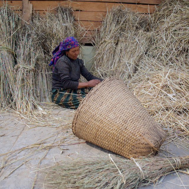 """Barpak Village (Ward 5), Gorkha, Nepal. This woman is trying to go back to..."" stock image"