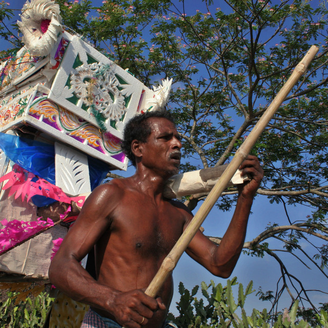 """""""Palanquins are still used for carrying brides in remote Bangladesh. In..."""" stock image"""
