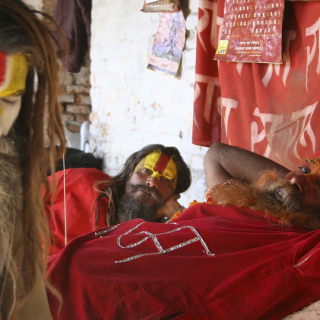"""""""Maha Shivaratri"""" stock image"""