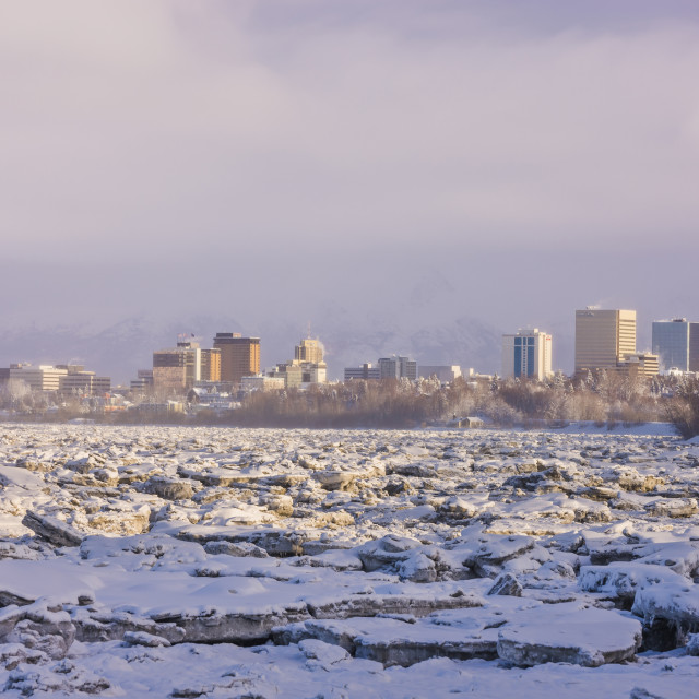 """""""The Downtown Anchorage Skyline As Seen From The Tony Knowles Coastal Trail,..."""" stock image"""