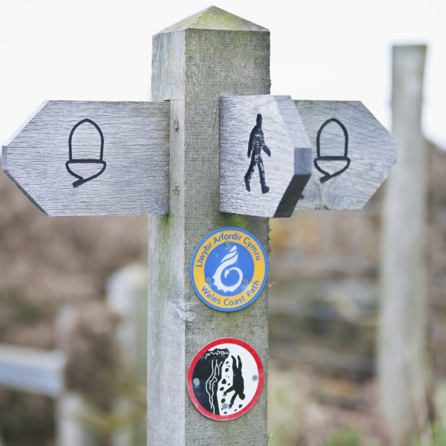 """""""A wooden post and directional signs for walking paths;Wales"""" stock image"""