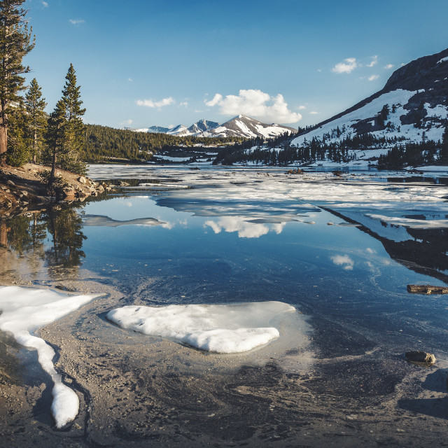 """Tioga Lake"" stock image"