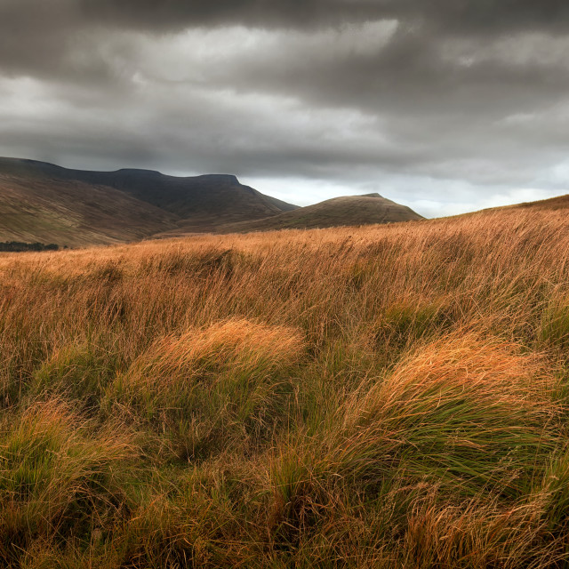"""The Brecon Beacons"" stock image"