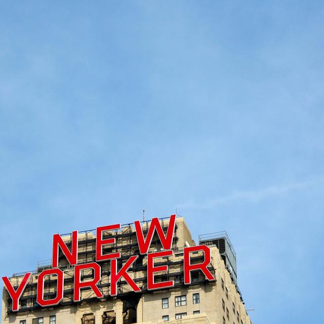 """New Yorker"" stock image"