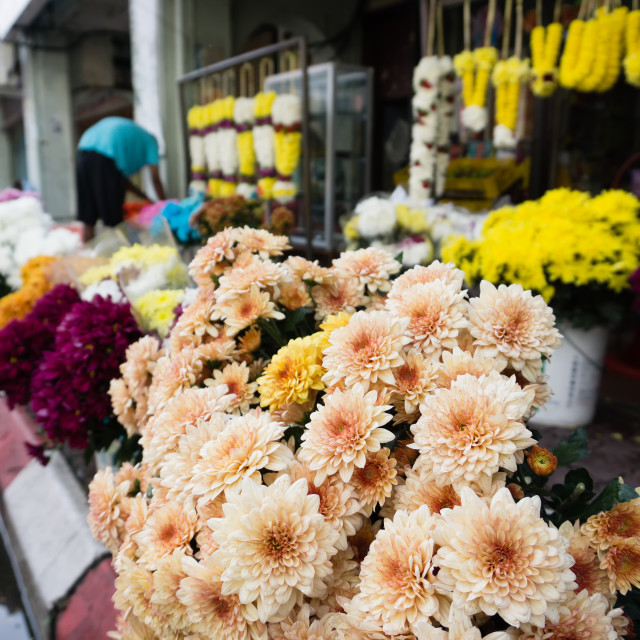 """""""Flower shop at Little India in Ipoh town, capital city of Perak, Malaysia."""" stock image"""