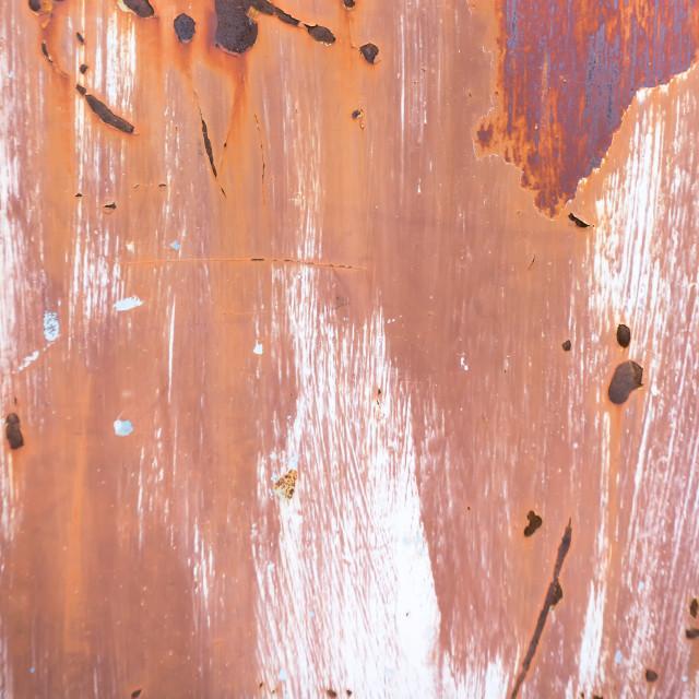 """""""Rustic grunge old metal door background"""" stock image"""