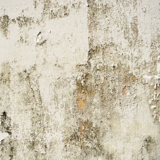 """Grunge concrete background with peeling off paint"" stock image"