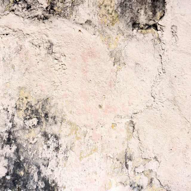 """""""Grunge concrete background with peeling off paint"""" stock image"""