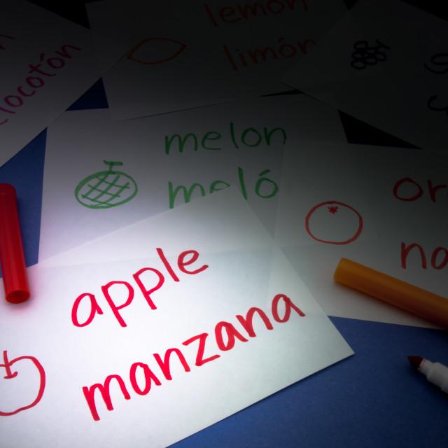 """Making Language Flash Cards; Spanish"" stock image"