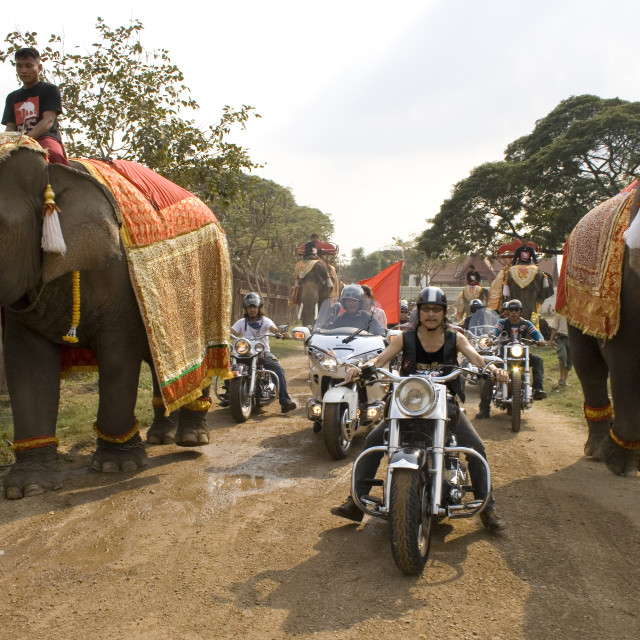 """Harley Davidson riders and elephant. Thailand. January 21, 2007."" stock image"