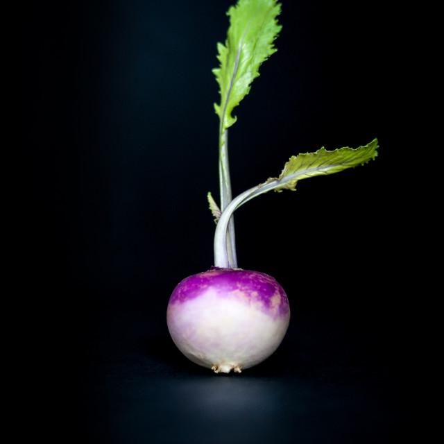 """""""Dancing Turnip"""" stock image"""