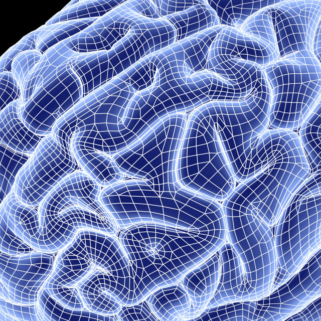 """Brain Wireframe10259.tif"" stock image"