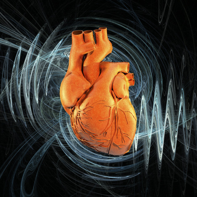"""Heartbeat, conceptual artwork"" stock image"