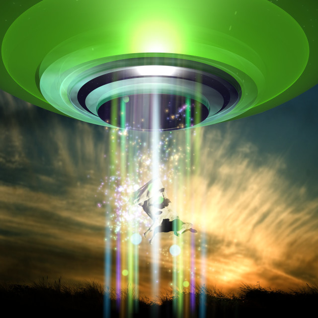 """UFO cattle abduction, conceptual artwork"" stock image"
