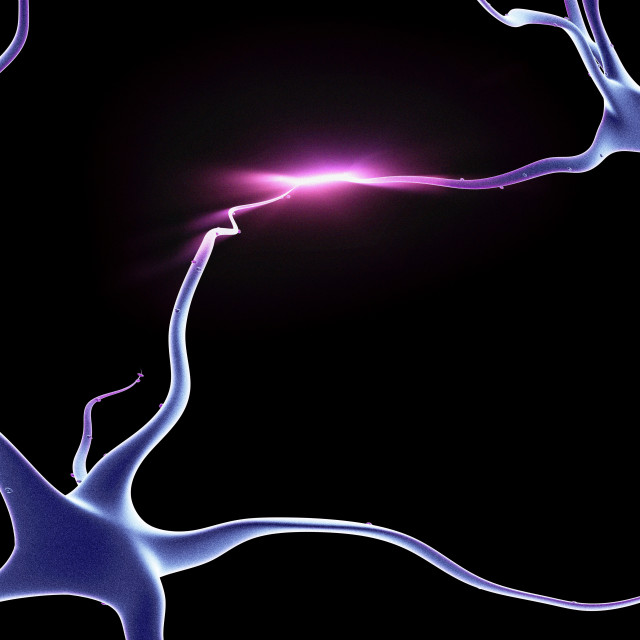 """""""Nerve cells, neurons connected"""" stock image"""