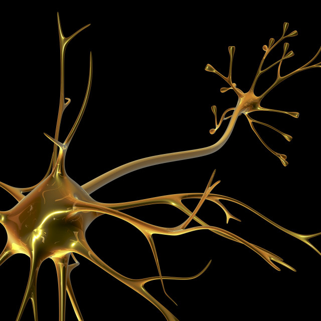 """""""Nerve cell"""" stock image"""