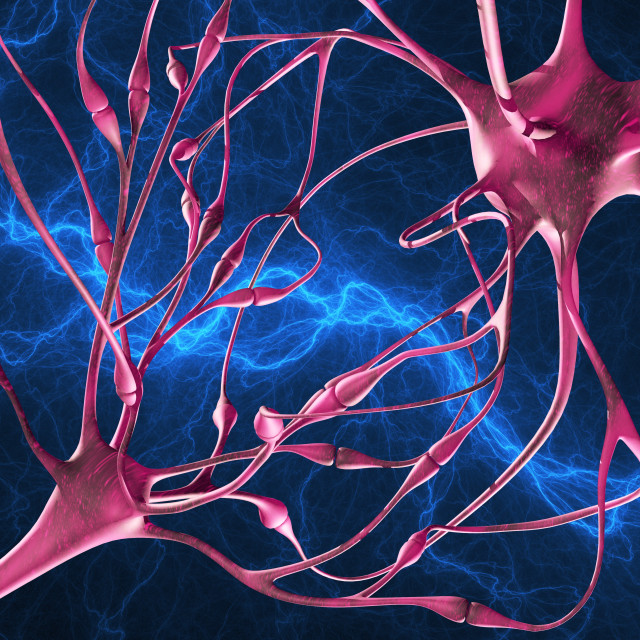 """Nerve synapses, artwork"" stock image"