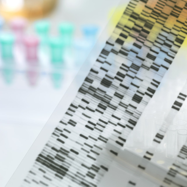 """Genetic research"" stock image"