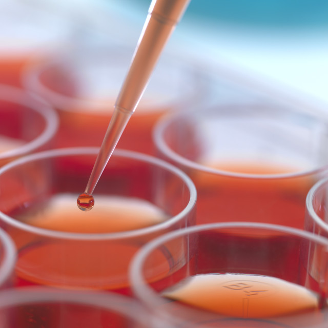 """""""Biological research"""" stock image"""