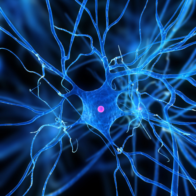 """Nerve cell, artwork"" stock image"