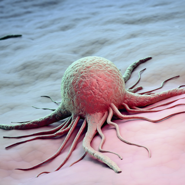 """Cancer cell scientific illustration"" stock image"