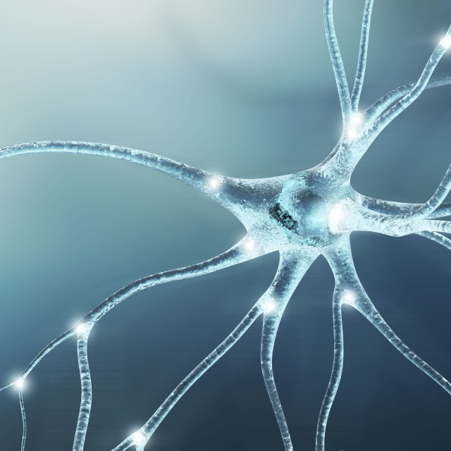 """neuron_11934.tif"" stock image"