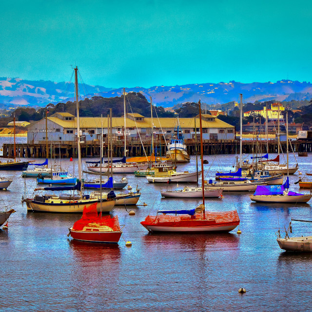 """Monterey Bay California"" stock image"