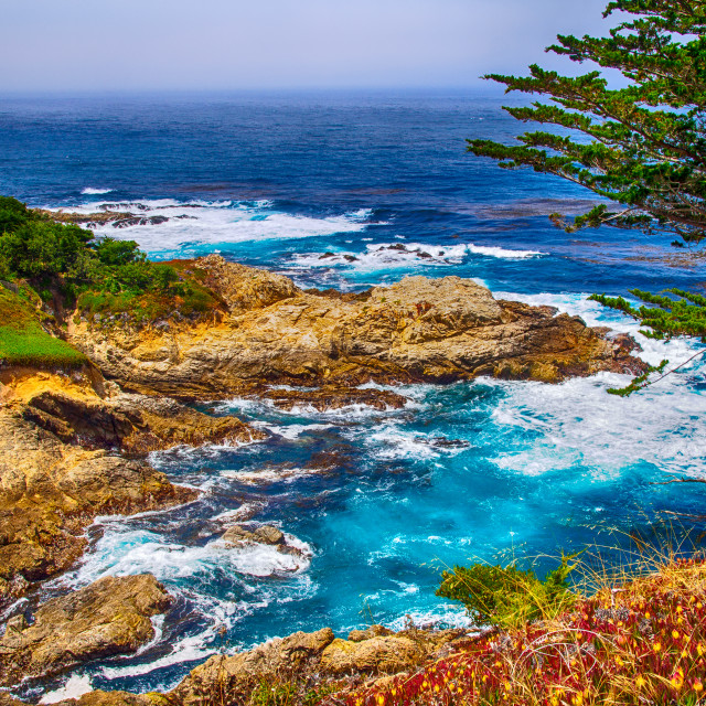 """Carmel Seaside"" stock image"
