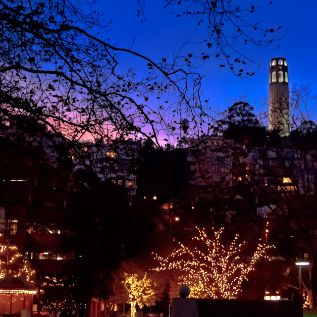 """Coit Tower"" stock image"