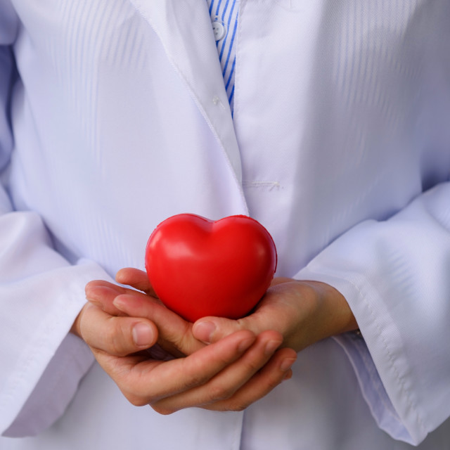 """doctor hands holding red toy heart"" stock image"
