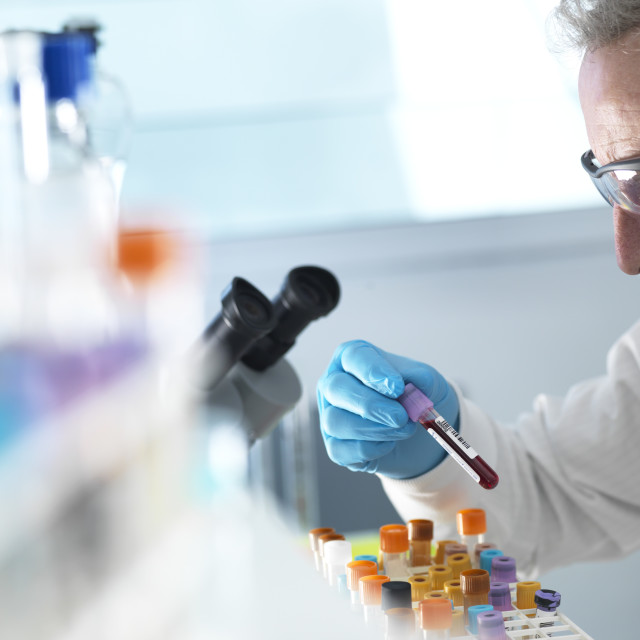 """""""Blood Research"""" stock image"""