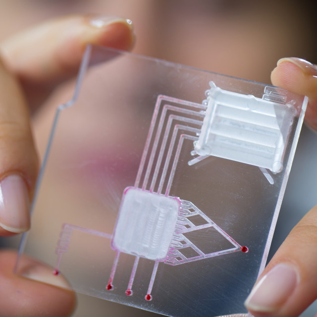 """Technician holding a lab on a chip"" stock image"