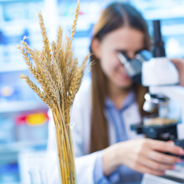 """Female nutritionist using microscope"" stock image"