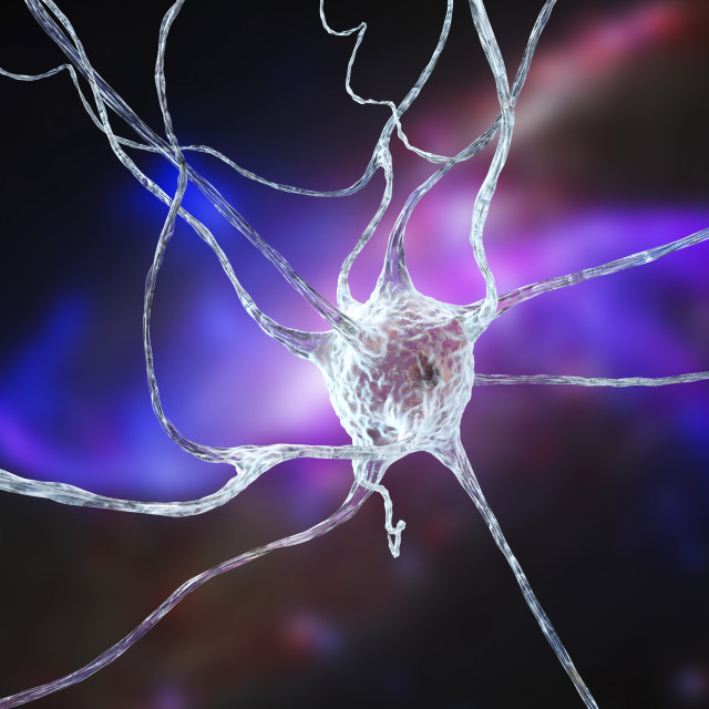 """Nerve cell, illustration"" stock image"
