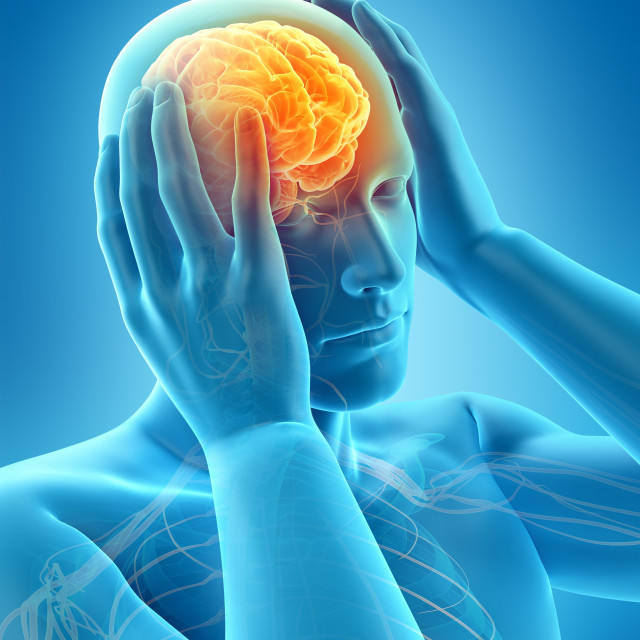 """Anatomy of person with headache, illustration"" stock image"