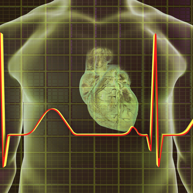 """Normal Heartbeat, Illustration"" stock image"