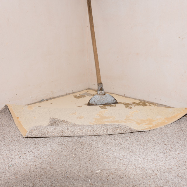 """Carpet removal"" stock image"