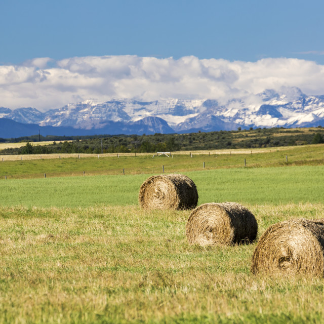 """Three Hay Bales In A Field With Mountains In The Background Slightly Snow..."" stock image"