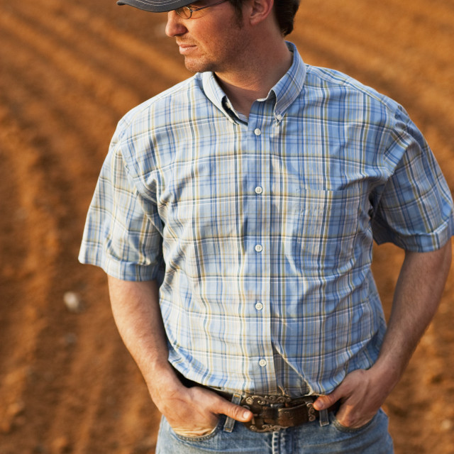"""""""Agriculture - Young farmer inspecting his cultivated field / Childress,..."""" stock image"""